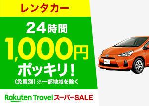 car_300_214_2.jpg