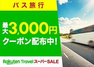 bus_300_214_3.jpg